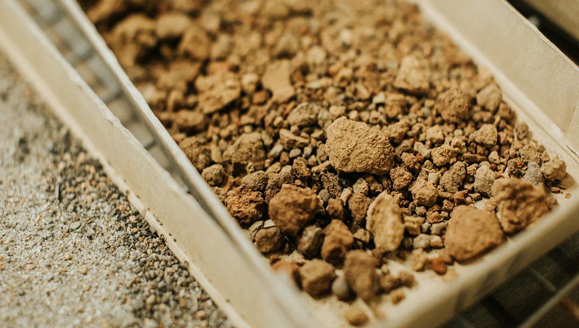 Soil-close-up