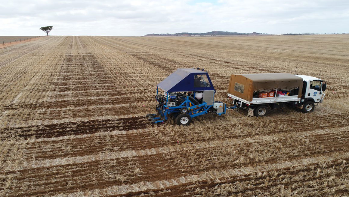 CSBPtrialsteamseeding2020trials